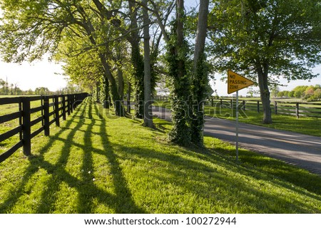 Country road in Kentucky at spring