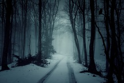 Country road in snowy forest in the mountains at night