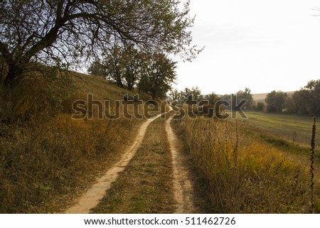 country road in the countryside autumn #511462726