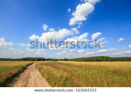 country road leading up to the horizon line , nature series