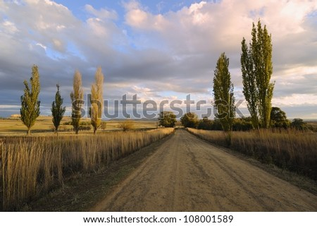 Country road, Rustler's Valley, Free State, South Africa