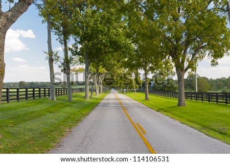 Country road surrounded the horse farms