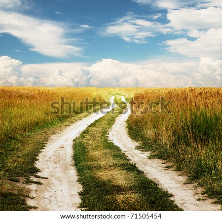 Country road through the fields - stock photo
