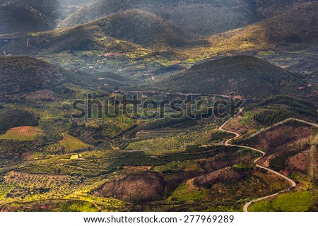 Country road through vegetation with sun rays lighting parts of the natural landscape in greece