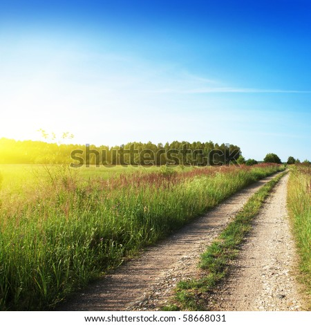 Country road to forest and sun.