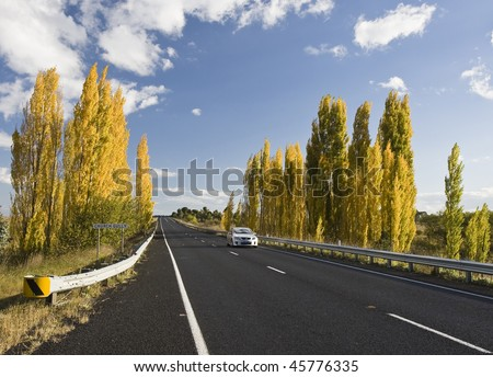 Country road under blue sky, New South Wales, Australia
