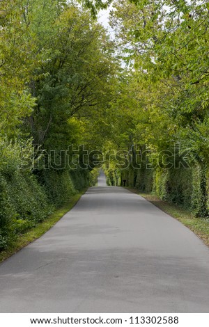 Country road with green fence
