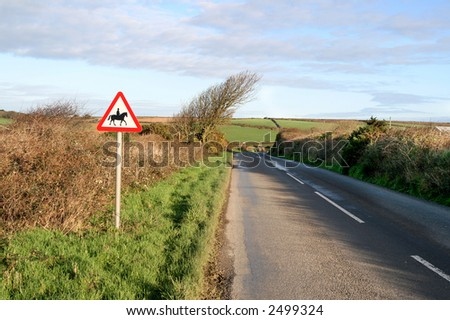 Country road with horses warning sign, Cornwall, UK