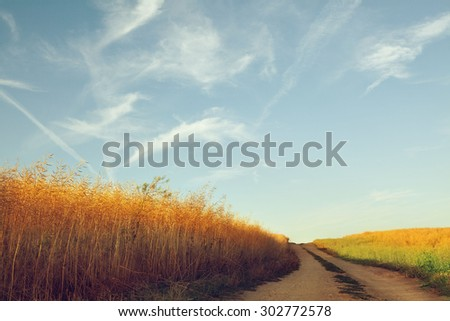 Country Road With Sun Light Effect