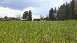Country side view in Finland