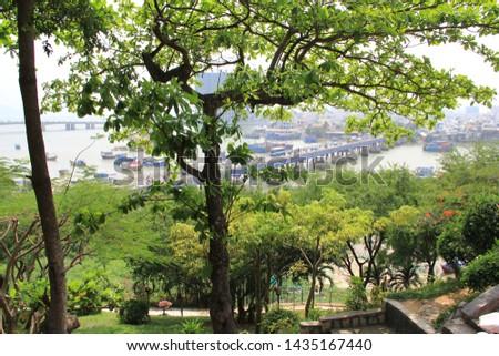 country Vietnam city vegetation vegetation #1435167440