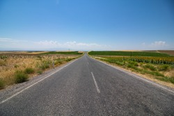 Countryroad vanishes on the horizon. Asphalt road in the steppe. Road in the agricultural fields.