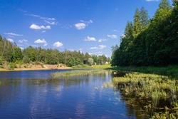 Countryside and nature of Latvia. Forest along the banks of river. Town of Ogre.