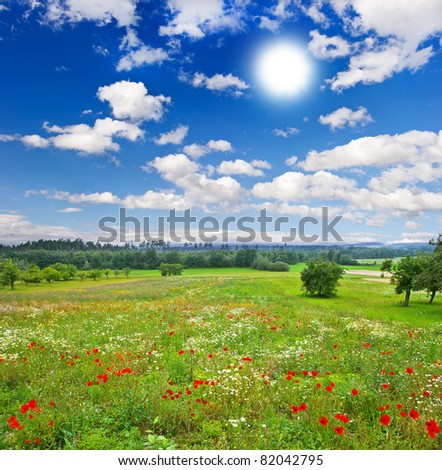 countryside. beautiful meadow and cloudy blue sky