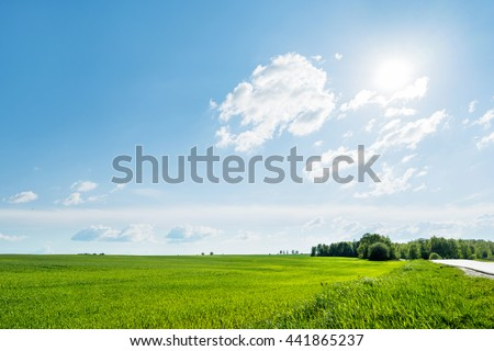 Countryside field natural background. Green grass and blue sky. Cloudscape in sunny day. Russia.