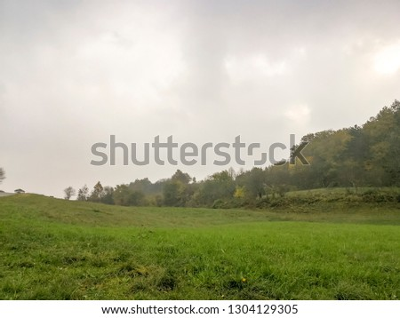 Countryside in the road in the countryside of Karst during autumn