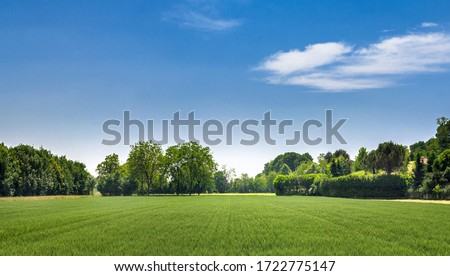 Countryside landscape. Italy. Beautiful typical countryside summer landscape. ストックフォト ©