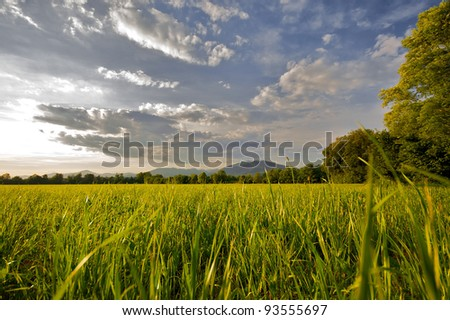 Countryside landscape sunset time in summer season