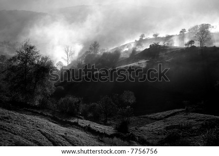 countryside landscape with myst and fog