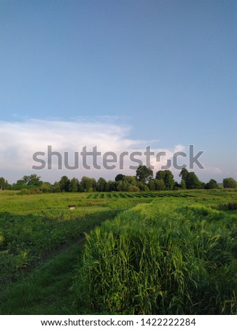 countryside, nature in the countryside, fields #1422222284