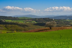 Countryside near the Volterra town in Tuscany Italy