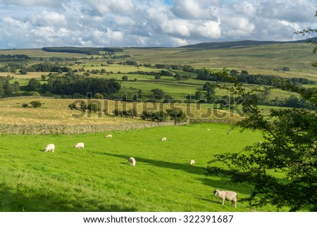 Countryside of the Lake District #322391687