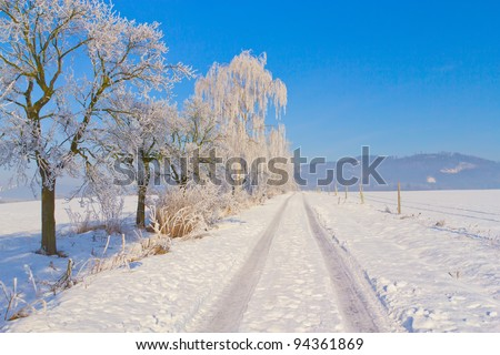 Countryside road through winter field  surrounded by snowy trees. Horizontally. (Czech Republic) - stock photo