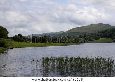 Countryside scene in Ireland