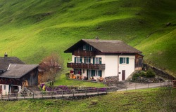 Countryside Valley View of Swiss Alps With Traditional Swiss House at Zermatt City, Switzerland. Rural Scenic and Amazing Nature Green Fields of Alpine Switzerland. Europe Travel Vacation in Spring