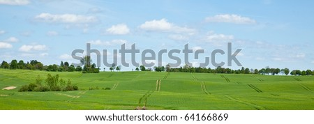 Countryside view in late spring in Greater Poland