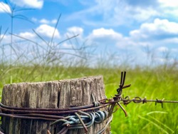 Countryside wire fence pole with grass landscape