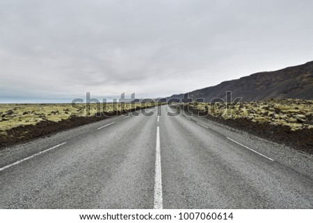 County roadway with orange roadside pillars between the green fields and mountains on the background of the cloudy sky in Iceland. Horizontal.