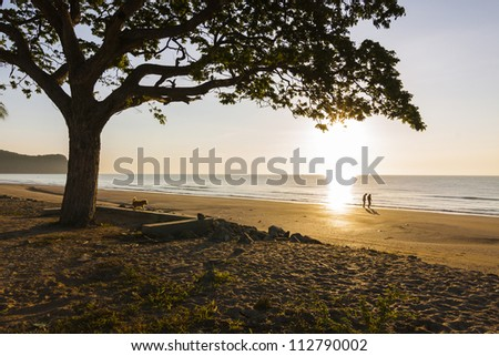 Couple and tree silouette on the sunset beach