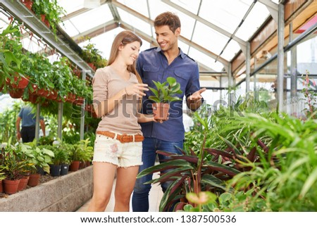 Couple buys plants together in a nursery in spring