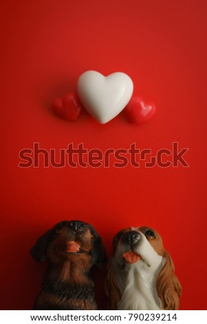 Couple dog sits up to look at the floating heart with a red background.Happy Valentines Day background.Saint Valentine's Day concept. #790239214