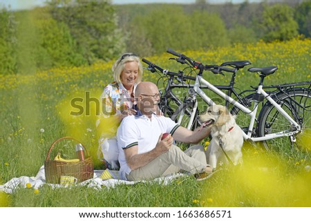 Couple having picnic with pet dog in countryside