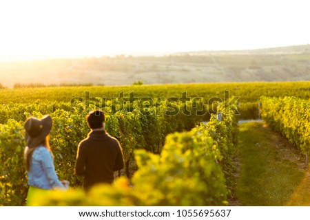 Couple holding hands at sunset in a winery filed - Shutterstock ID 1055695637