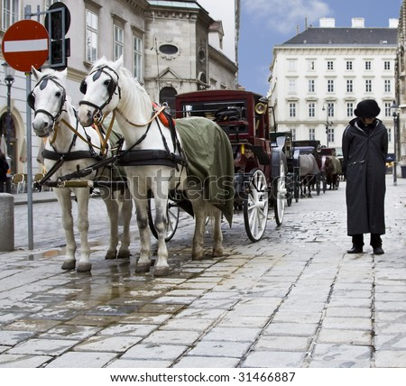 couple horses cab lane on Vienna square with cabman