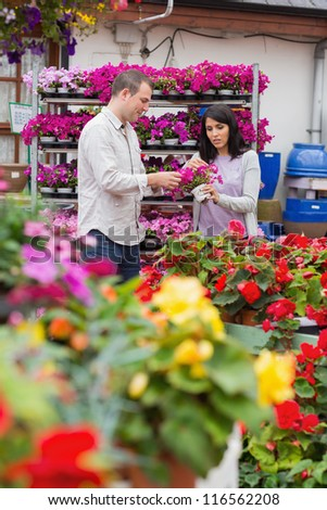 Couple looking at flower pot of purple flowers in garden center