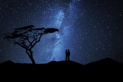 Couple of lovers silhouette kissing near a tree under a sky full of stars