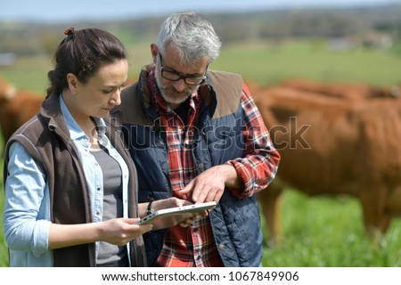 Couple of stock breeders using tablet in field #1067849906