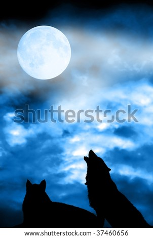couple of wolves silhouettes with full moon in the sky