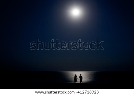couple on the shore at night in the moonlight
