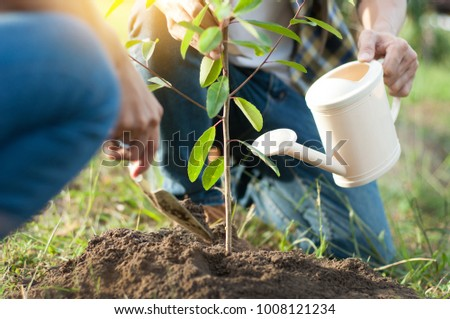 couple planting and watering a tree together on a summer day in park, volunteering, charity people and ecology Environment and ecology concept #1008121234
