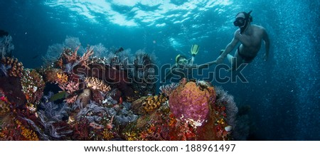 Couple snorkeling together over vivid coral reef. Focus on corals #188961497