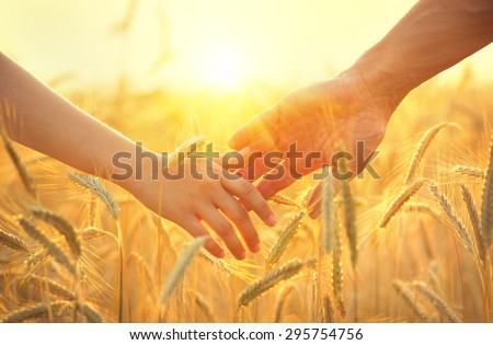 Couple taking hands and walking on golden wheat field over beautiful sunset.