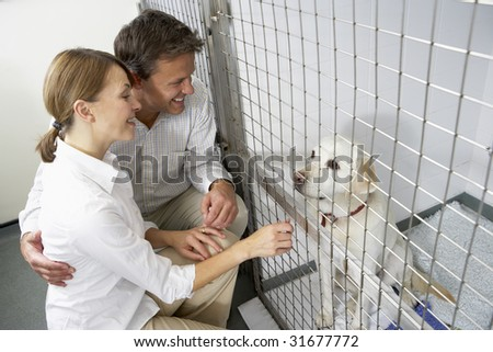 Couple Visiting Pet Dog