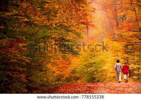 Couple walking in the forest in fall. Quqbec, Canada. Photo stock ©