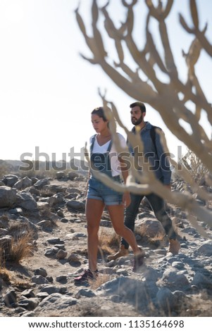 Couple walking through a desert past a cactus tree on a sunny bright day, they are walking along a rocky path