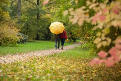 Couple with umbrella during autumn walk in the forest